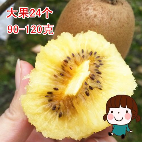 四川蒲江黄心猕猴桃新鲜奇异果孕妇水果5斤特大果不是红心猕猴桃