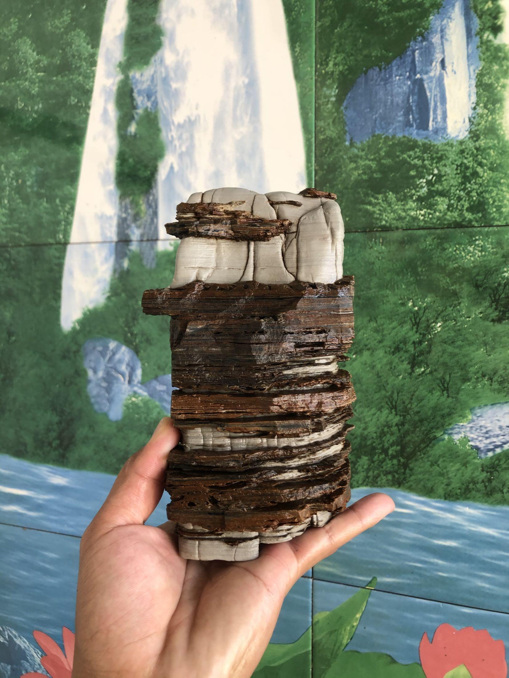 Сувенирные камни Артикул 615018076502
