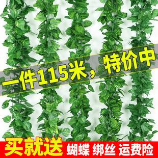 仿真綠蘿葉假花藤條葡萄樹葉吊頂管道裝飾藤蔓塑料綠植物纏繞遮擋