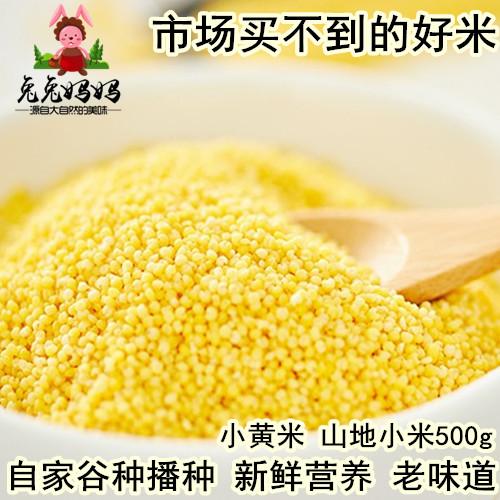【兔兔妈妈】新山地家种小米 一斤装小黄米农家栗树下杂粮5斤包邮