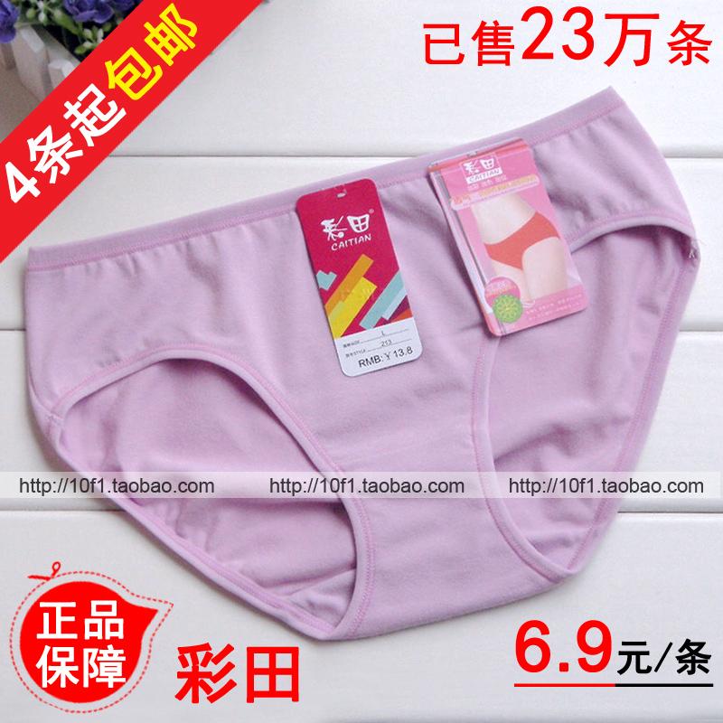 4条起包邮【正品】彩田213 纯棉 纯色透气 低腰三角 女士全棉内裤