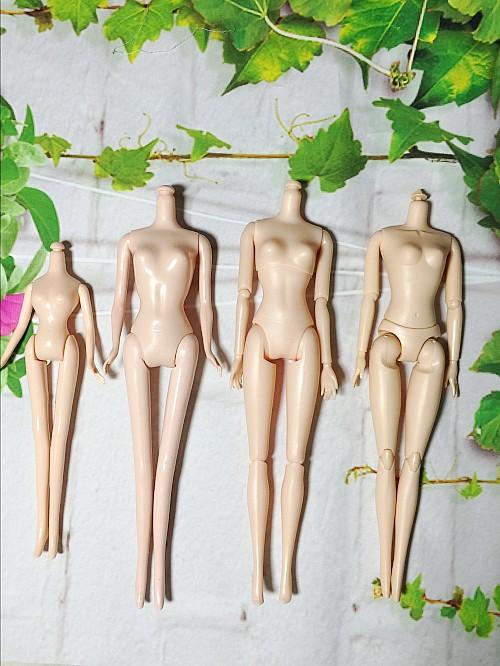 Барби Барби 12 общей совместной общей устойчивости 5 совместное мышцы голая Ева ферритная оптом