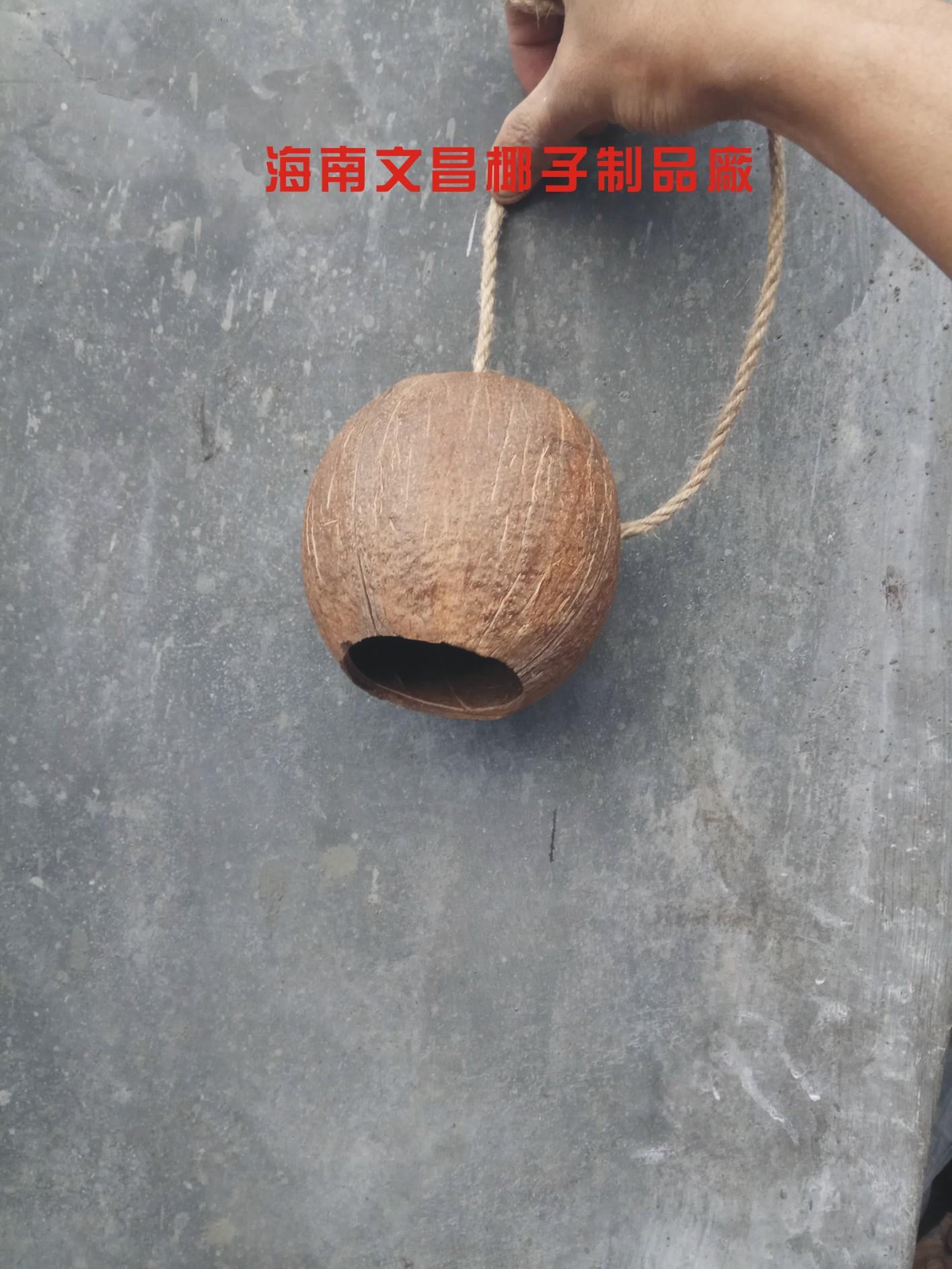 Кокос оболочка кокосовые волокна ремесла статья доска ху творческий цветочный горшок корзина домой декоративный сад искусство зеленый из больше мясо семена завод бесплатная доставка