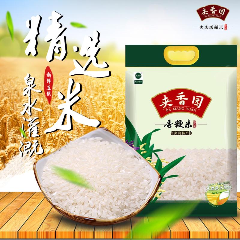 夹沟香稻米10斤袋装清香粳米煮米饭夹香园5kg寿司米贡米新米大米