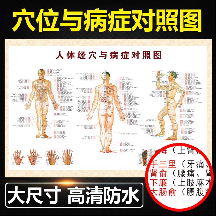 В врач флип-чарт игла прижигать акумодельурные точки диаграмма тело человека меридиан акумодельурные точки диаграмма большой инжир решение все тело двенадцать меридиан домой массаж