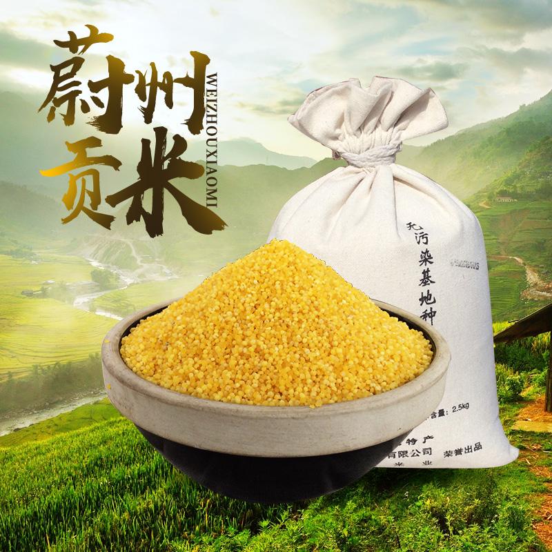 河北张家口特产蔚县桃花农家黄小米小黄米新米蔚州贡米小米粥黏米