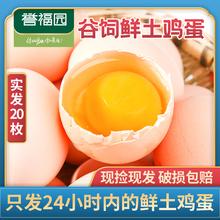 农家谷饲新鲜土鸡蛋整箱20枚包邮五谷喂养草鸡蛋柴鸡蛋誉福园