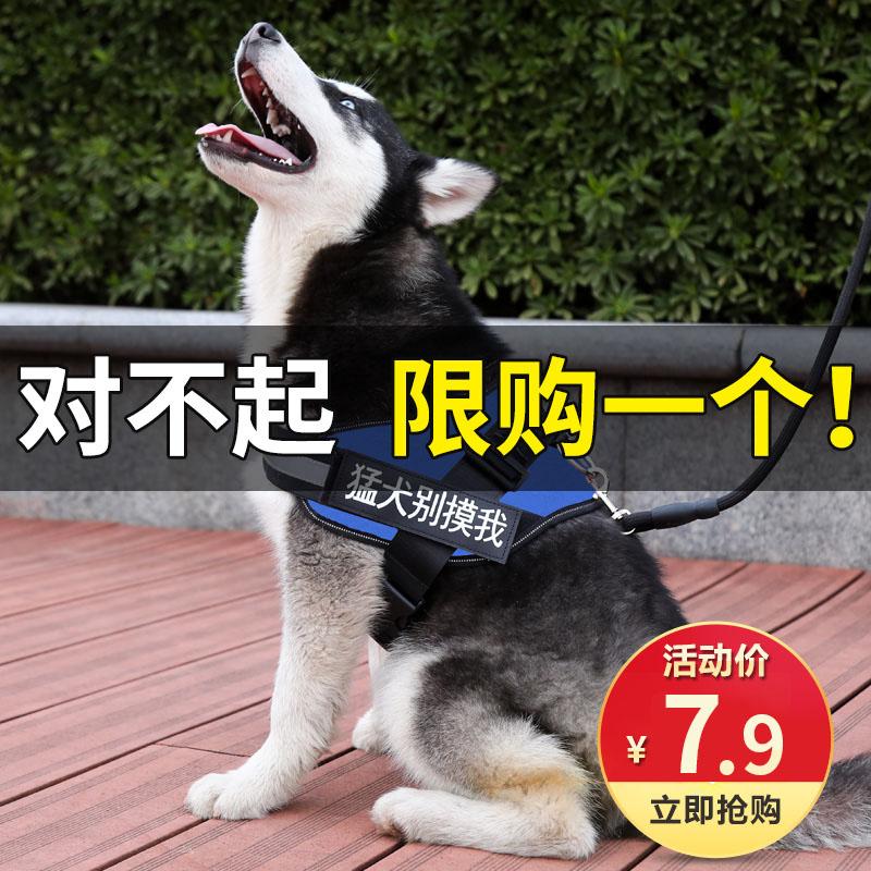 狗狗牵引绳背心式遛狗绳子金毛泰迪萨摩耶大中小型犬狗链子胸背带