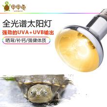 爬宠乌龟晒背灯uva+uvb全光谱太阳灯蜥蜴水陆龟加热冬眠太阳灯