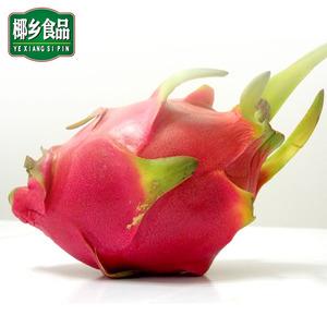 海南三亚白果肉白心5斤新火龙果