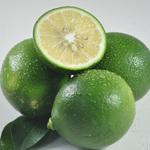 现货海南新鲜青柠檬5斤(现摘现发)