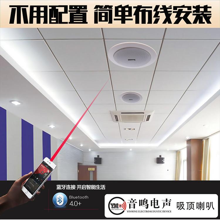 Потолок звук магазин оспа динамик потолок звук установите беспроводной bluetooth динамик собственный усилитель существует источник динамик