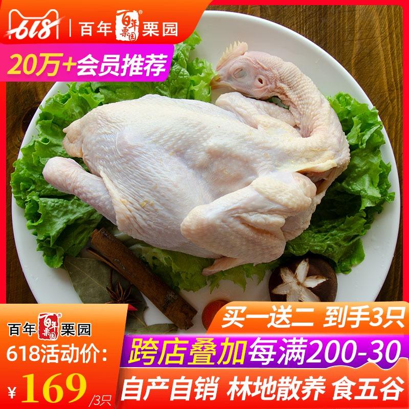 买一送二原品 首农百年栗园土鸡 每只净重800g林地散养柴鸡