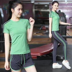 夏天网红瑜伽服套装女薄款速干衣高端锦纶专业运动健身房跑步短袖