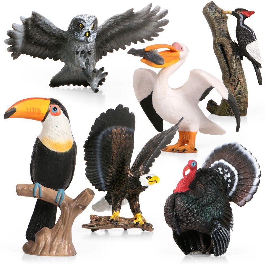儿童实心仿真动物模型套装塑胶摆件科教认知飞禽鸟类老鹰鹦鹉鸮