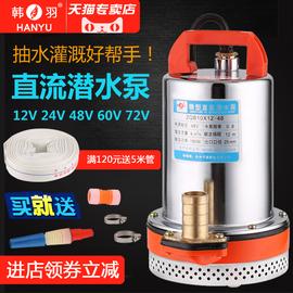 韩羽直流潜水泵12V24V48V60V伏电瓶车水泵电动车抽水泵农用抽水机