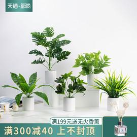 北欧仿真植物摆件假绿植盆景办公室内装饰品家居客厅龟背叶小盆栽图片