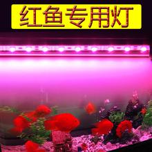 魔红色红鱼灯 増色防水led鱼缸灯照明龙鱼罗汉锦鲤鹦鹉鱼专用灯管
