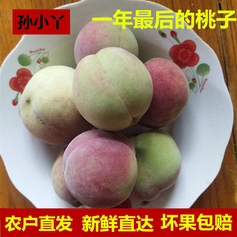沂蒙山小毛桃甜脆小冬桃青州蜜桃冬雪蜜桃孕妇桃子新鲜水果5斤