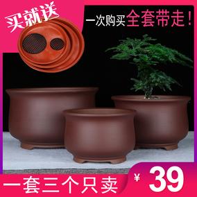 宜兴紫砂特价阳台君子兰多肉兰花盆