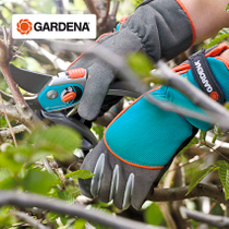 Germany imports Gardiner with thickened protective gloves rose rose Moon trim anti-thorn anti-stick horticultural Gloves