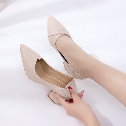 女士两穿高跟鞋粗跟2019新款春秋韩版百搭尖头小清新6cm中跟单鞋