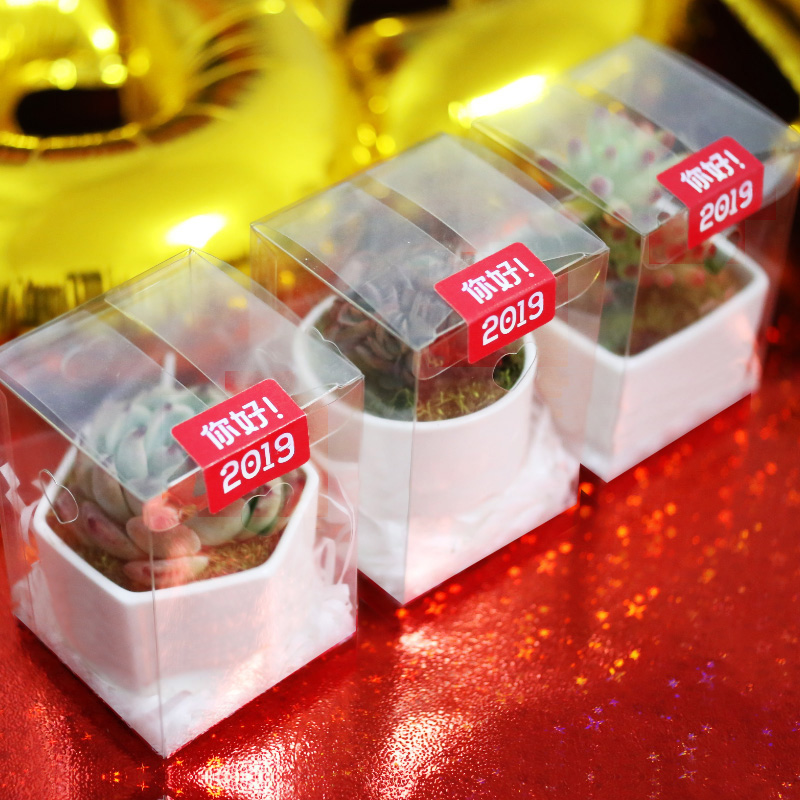 创意多肉植物组合盆栽礼盒礼品蓝石莲吉娃娃黑王子趣味绿植盆栽花