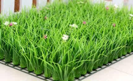 直销室内带花塑料草仿真绿植假草坪