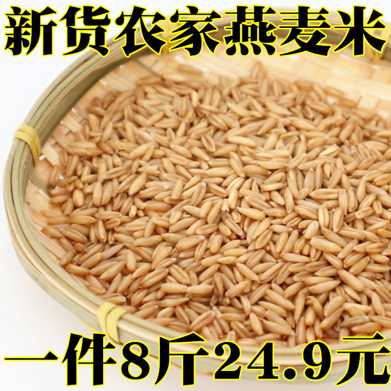 新货生燕麦米农家自产五谷杂粮裸燕麦仁粒500g散装内蒙古8斤非9斤