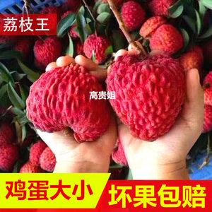 【海南荔枝王】超大甜荔枝新鲜包邮 5斤当季水果糯米糍妃子笑礼盒