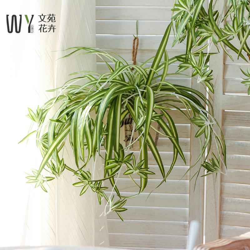 仿真吊兰绿植绿叶壁挂墙上装饰吊饰ins北欧家居餐厅创意墙面植物