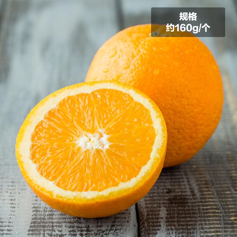 ~天貓超市~滿88減40澳大利亞臍橙4個約160g 個澳橙 新鮮水果