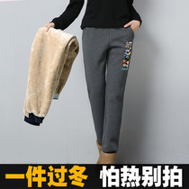 冬季羊羔绒运动裤女加绒加厚秋冬裤子宽松休闲卫裤女外穿保暖棉裤