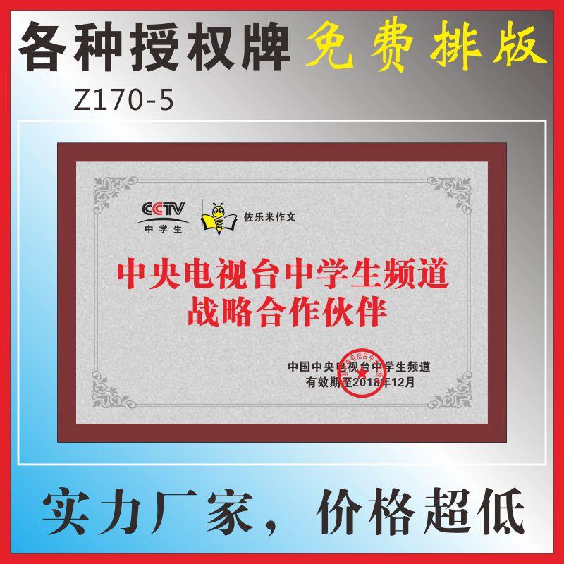 中央电视台中学生频道战略合作伙巾帼文明岗国际荣誉证书合作牌匾