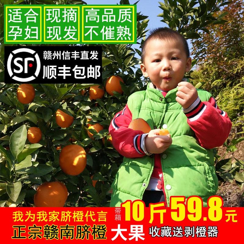 江西赣南脐橙农家自然成熟新鲜水果多汁现摘现发甜橙子10斤包邮