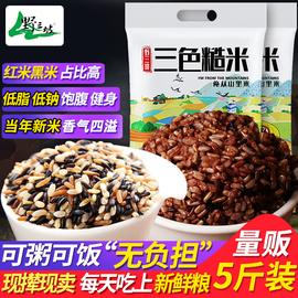 三色糙米新米5斤五谷雜糧紅米黑米糙 米糊粗糧健身胚芽10脂減飯圖片
