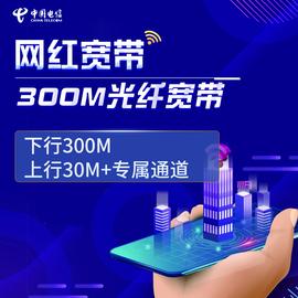 【山东电信自营】电信300M网红宽带  专属加速通道图片