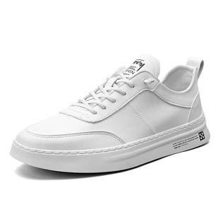 夏季透气薄款小白鞋男士韩版男鞋