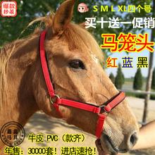 马笼头马具全线板笼套马术用品大小矮马龙头买10送1亏本特价