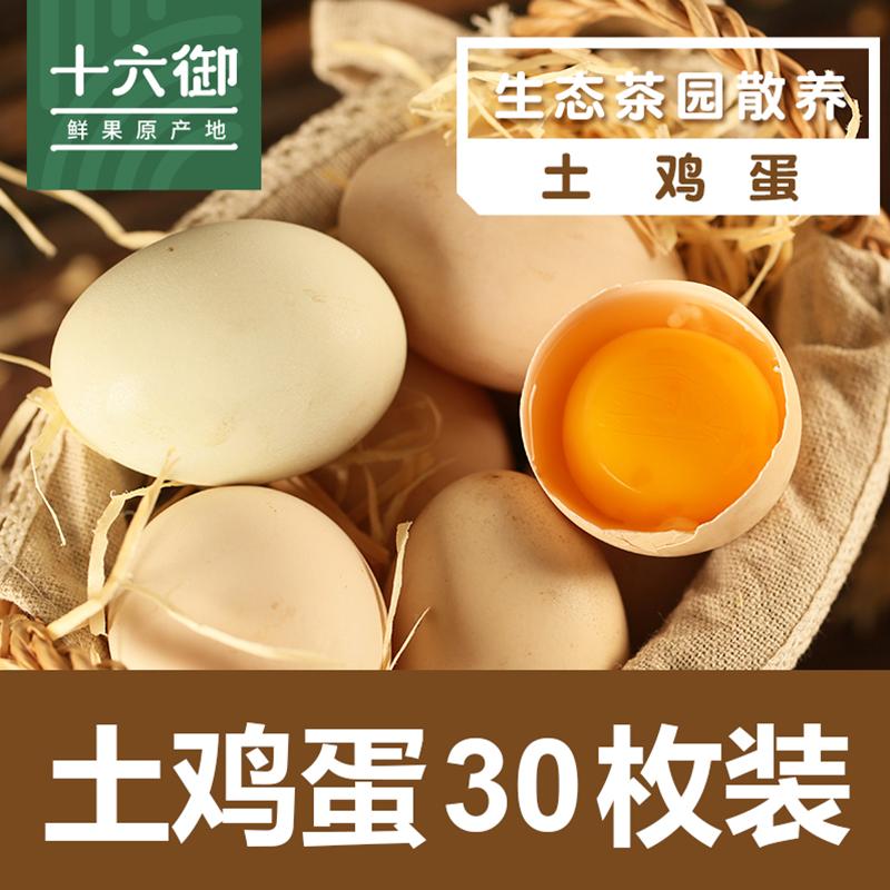 十六御 农家茶园土鸡蛋林下散养原生蛋新鲜野外散养草鸡蛋月子蛋