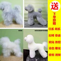 宠物美容假狗毛模型模特泰迪装贵宾拉姆装假狗毛宠物店练习仿真狗