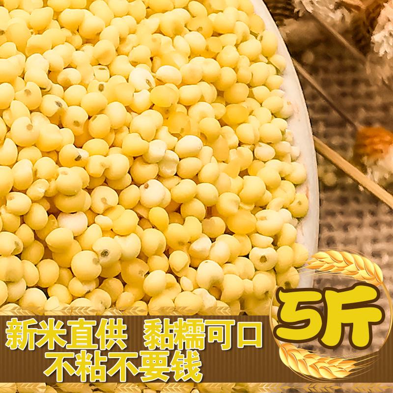 大黄米黏黄米5斤新米东北黏米黍米黏米饭黄糯米黄米粽子米糯小米