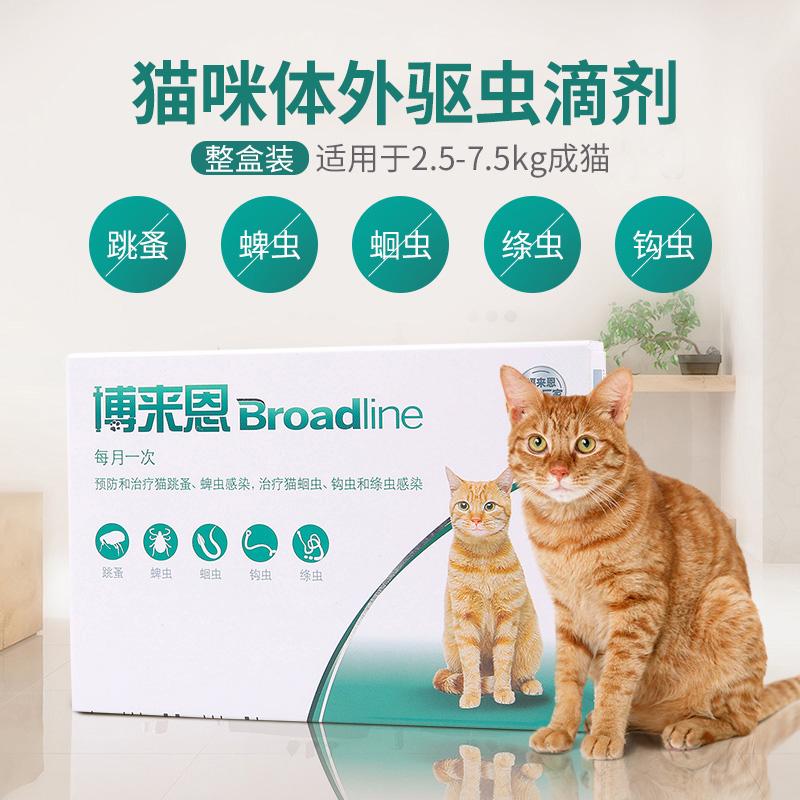 博来恩猫咪体外驱虫滴剂成猫体内外一体跳蚤幼猫博莱恩体内驱虫药