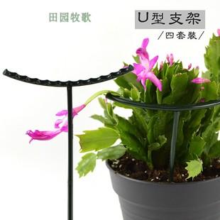 Сад искусство цветочный горшок небольшой бассейн завод поддержка полка завод краб коготь орхидея китайская роза орхидея защищать лист стоять клубника помидор цветок стоять