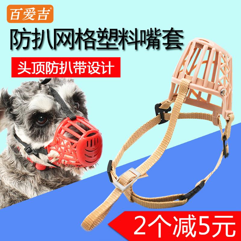 Собака рот против случайный называемый щенок маски небольшой собаки домашнее животное тедди край пастух золото волосы собака противо случайный есть собака рот крышка