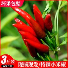 新鲜红小米辣椒小米椒指天椒3斤