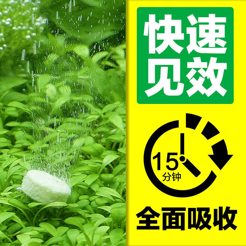 Два окисление углерод аквариум CO2 водный ландшафтный дизайн ручной работы CO2 волосы сырье устройство трава цилиндр монтаж два окисление углерод лист