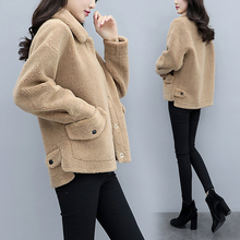 Woman's Short Sheep Plush Coat 2009 New Thickened Korean Edition Small Lamb Fur-in-One Coat Winter Tide