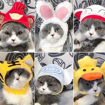 猫咪头套可爱狗狗帽子猫猫生日头饰装扮兔子发夹装饰用品宠物草帽
