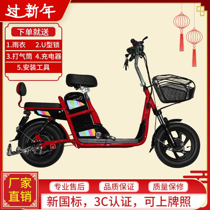 Emma official flagship store new global new national standard bicycle electric vehicle battery detachable charging battery